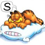 garfield sleeping